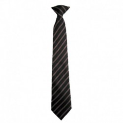 CLIP-ON SCHOOL TIE